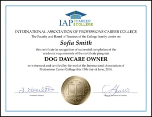 Certificate-DOG