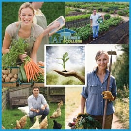 organic-farmer-certificate-course_IAPCC